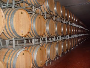 barricas vino
