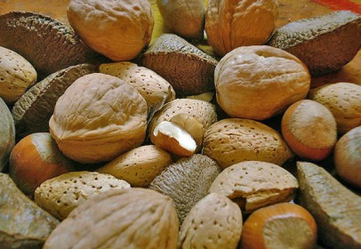 frutos secos-406x280