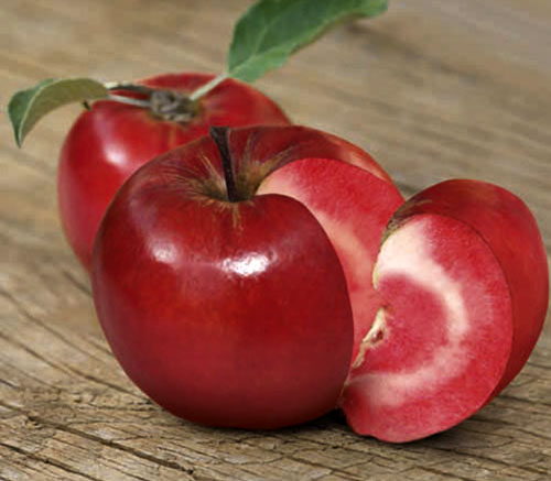 manzana redlove