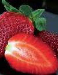 Frutillas dest-0x260 -1 -1 200x260