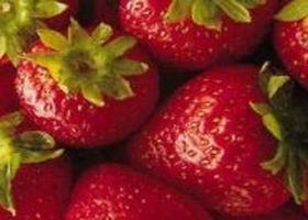 frutillas01