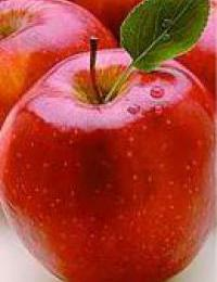 manzana agosto destacada-200x0 -1 -1 200x260