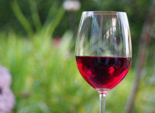 México: Desarrollan vino de frutos rojos para tratar la diabetes