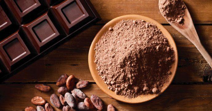Investigación reciente revela que el cacao tiene múltiples beneficios para su salud
