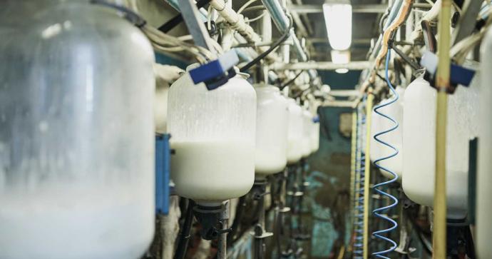 Europa: nuevo método de pasteurización permite conservar la leche fuera de su envase