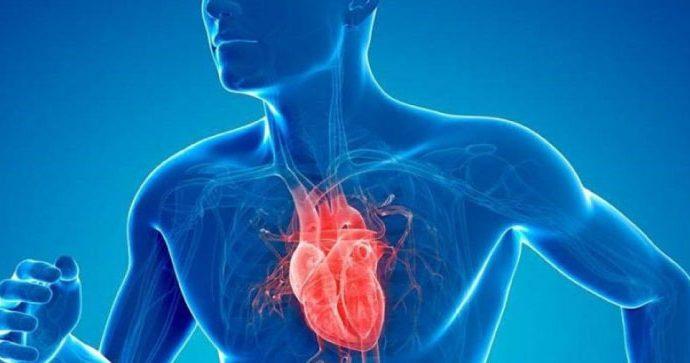 España: Elaboran guía para cuidar la salud Cardiovascular y prevenir ECV