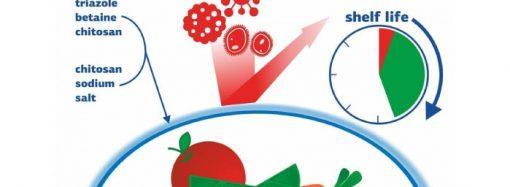 Rusia: desarrollan envoltorio antibacteriano biodegradable que protege con mayor eficacia los alimentos