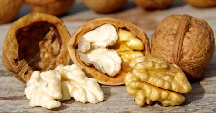 Estudio afirma que los consumidores de nueces tienen 11,5% menos probabilidad de enfermedades cardíacas