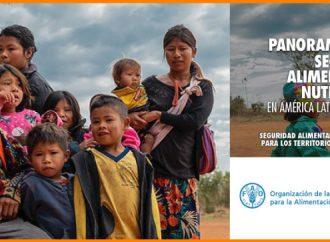 """ONU revela aumento de malnutrición infantil en extremos del país y califica cifras como """"preocupantes"""""""