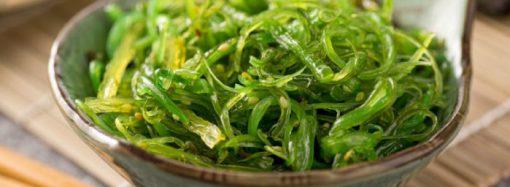 Expertos señalan que los productos de pescado y algas marinas serán las próximas proteínas alternativas (en inglés)