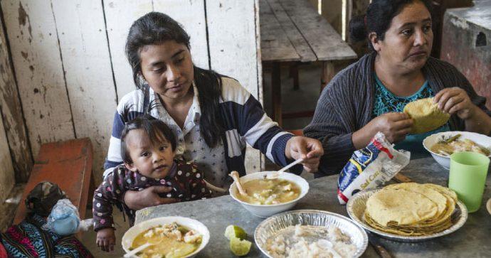 Argentina: Lanzan programa regional para mejorar la nutrición y seguridad alimentaria de las personas