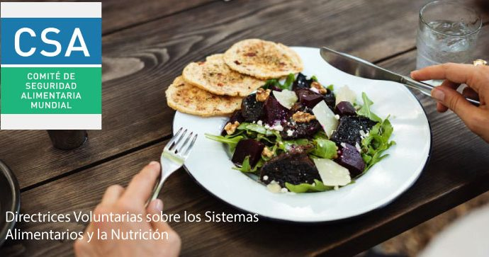 El Comité de Seguridad alimentaria Mundial (CSA) Lanza las Directrices Voluntarias sobre los Sistemas Alimentarios y la Nutrición