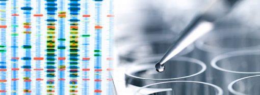 El rol que cumplirá la genómica en el futuro de la industria de alimentos