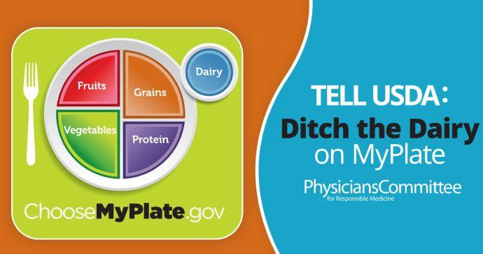 EE.UU:Marco de pautas dietéticas USDA