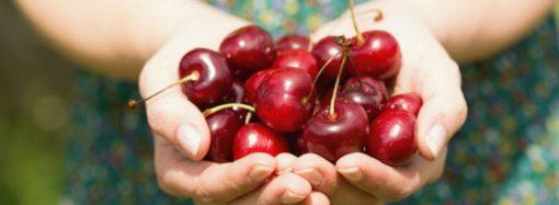 Propiedades antioxidantes y beneficios para la salud de la cereza
