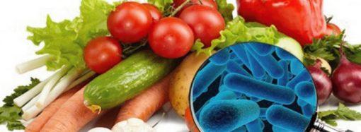 Consejos para disminuir el riesgo en casa del contacto de bacterias y microbios en los alimentos