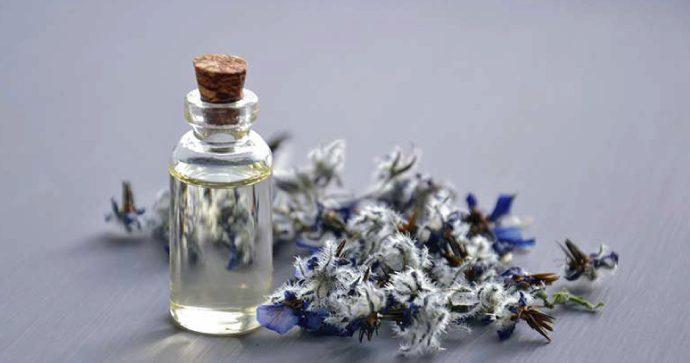 Aceite de Mertensia y sus propiedades para utilizarlo como alimento funcional